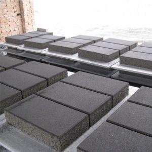 Veelkleurige Permeabele Concrete Baksteen van Bestrating/Bakstenen/het Bedekken Bakstenen/Concrete Bakstenen voor Tuin