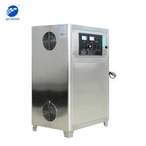 trattamento dell'ozono dell'acqua 30g, disinfezione dell'acqua dell'ozono, acqua Ozonation