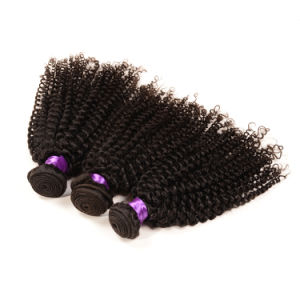 7A all'ingrosso Human Hair Extension nessuno Shedding Virgin Hair indiano, Fashion Kinky Curly Hair