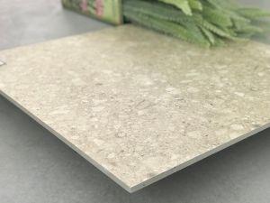Vloer van de Tegel van het Porselein van het Bouwmateriaal de de Europese Ontwerp Verglaasde en Tegel van de Muur (TER602)
