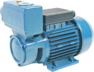 주변 펌프 (TPS)