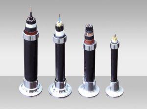 Cavo di controllo flessibile dell'isolamento del PVC del cavo di memorie di bassa tensione 450/750V 16