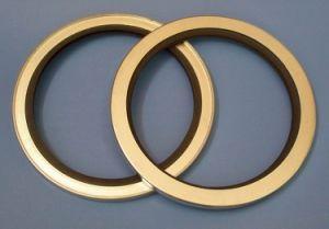 NBR duplo lábio de vedação de óleo personalizar as vedações de óleo moldado Fabricante