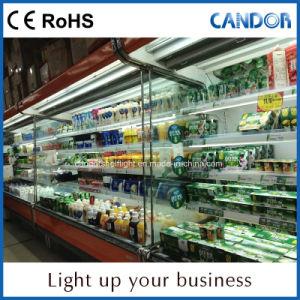 Indicatore luminoso fragile della mensola del consumo LED di potere basso con RoHS certificato