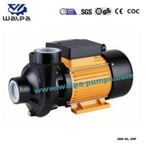 Centrifugal van uitstekende kwaliteit Clean Water Pump voor Irrigation Full van Power 3HP 2dk-30