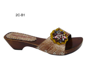Chaussures pour dames (2C-B1)