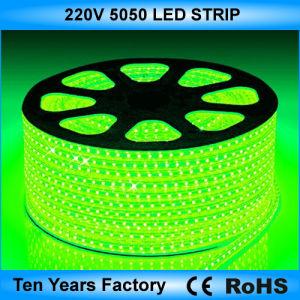 striscia 100m di 220V SMD 5050 LED un rullo