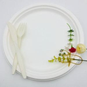 100 % biodégradable jetable Environment-Friendly plaque plaque de la canne à sucre