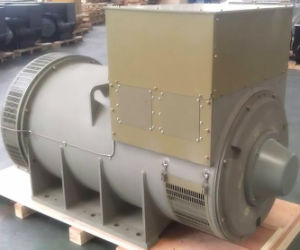 Gemaakt in Brushless Magnetische Alternators van China Faraday