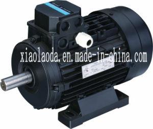 MS Series de Motores Eléctricos de Trifásicos Asíncronos