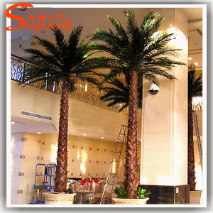 2015 Barato Artificial decorativas Fake Plastic Plantas Palm Tree