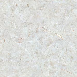 Hoogwaardige Tegel in 100X100cm met Beste Prijs (Y10802P)