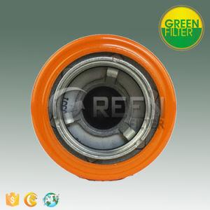Lubrifique o Filtro de Óleo Centrífugo de Autopeças (P170308)