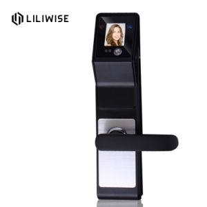 Het elektrische Slimme Slot van de Deur van de Erkenning van het Gezicht van het Tapgat van het Alarm NFC van de Veiligheid van de Veiligheid Biometrische