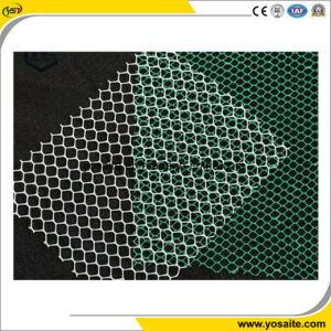 Plastic HDPE met grote trekspanning Geonets van de Techniek van de Sterkte en van de Verlenging Geotechnische