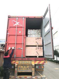 Melhor fornecedor confiável de partes separadas a Porta do Elevador Selcom na China com preço barato