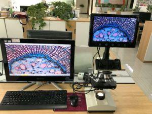 Prezzo di fabbrica della Cina per il microscopio dell'affissione a cristalli liquidi di Digitahi per il laboratorio Xsz-107bniii