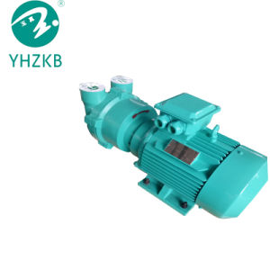 2BV Bomba de vacío de anillo líquido serie