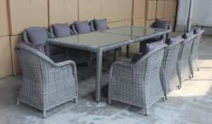 SGS Rattan/Wicker Dining Set per Outdoor (DS-219)