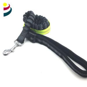 La correa del perro de la correa de cinta elástica