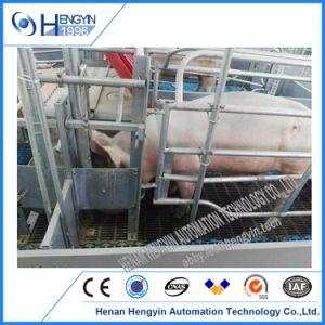 Stalle del maiale che figliano la pavimentazione di figliata della cassa della scrofa delle penne da vendere