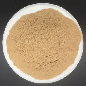 Os sucedâneos torrados do alho em pó