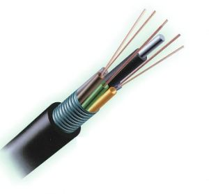 96 Enterrement de base Single Mode Direct câble optique (GYTY53)