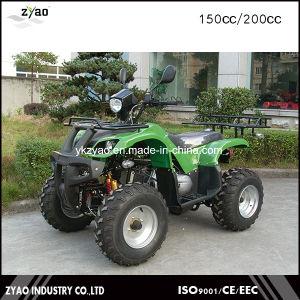 Qualitäts-konkurrenzfähiger Preis-neuestes Modell ATV