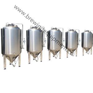 1500L Cervecería artesanal el equipo de China