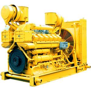 Motore diesel G12V190pzl-3