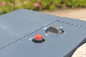 セリウムとのキャビネットCeramic Gas Heater