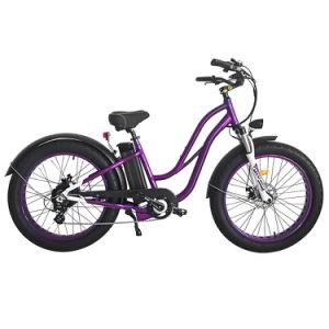 Couleur pourpre 750W Old Fashion bicyclettes vélos électriques pour les femmes