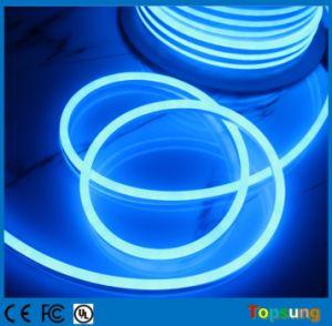 24V Mini LED Neon Ribbon Flexible Light 8.5X17mm Blue Color