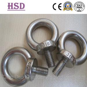 Moulage en acier galvanisé DIN580 & DIN582 et l'oeil de l'écrou du boulon à oeil