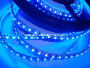 EMC CE LVD RoHS dos años de garantía TIRA DE LEDS