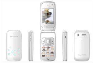 2409 GSM de Mobiele telefoon van de Muziek