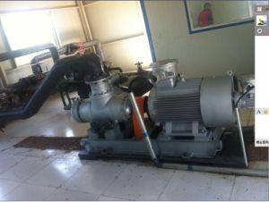 Palladium-Schrauben-Pumpe für Hochviskositätsflüssigkeit