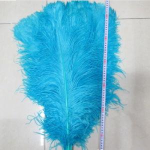Cores de fantasia a granel Artificial penas de avestruz avestruz sintético Feather