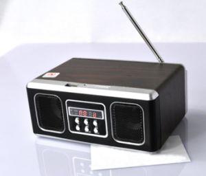 Altoparlante portatile con la funzione di Fm LED del lettore di USB/SD (M-17)