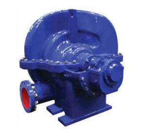 Elektrische zentrifugale doppeltes Saugwasser-Pumpe
