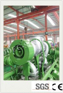 Gerador de gás da Série Cummins Fabricante Syngas preferido do Grupo Gerador (50KW)