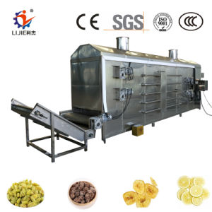 Asciugatrice dell'alimento continuo automatico dell'aria calda per