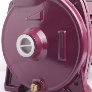 A CPM158 1HP de 1 polegada para tratamento de água eléctrica da bomba centrífuga