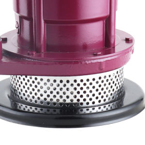 Qdx15-7-0.55 Agricuture bomba eléctrica sumergible Agricultura bombas de agua