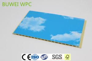 Gezonde Wallboard voor de Binnenlandse Bouw met SGS en Ce