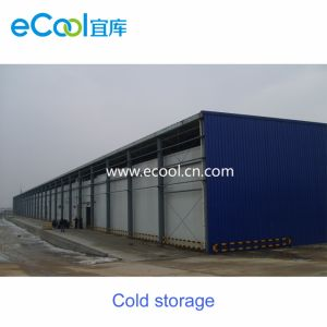 Kundenspezifische große Tiefkühlkost-neue haltene Kaltlagerung