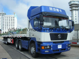 Camion del carico del camion del camion 340HP 25cbm di Shacman