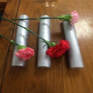 Литой алюминий бар, нанеся на формирование алюминиевую балку холодной динамического алюминиевый квадратный плоский стержень панель из алюминия (2011, 20242A17, 6060, 6061, 6063, 6082, 7055, 7075)