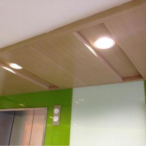 1100 panneau en aluminium de mur rideau de plafond en aluminium de garantie de 20 ans avec ignifuge