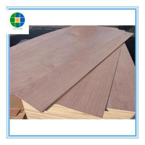 Contreplaqué de bois de placage de peuplier Okume Core utilisés pour meubles